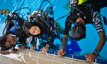 School Holidays Discover Scuba Diving Program