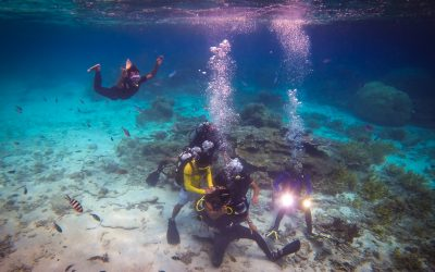 PADI Underwater Videographer Specialty course