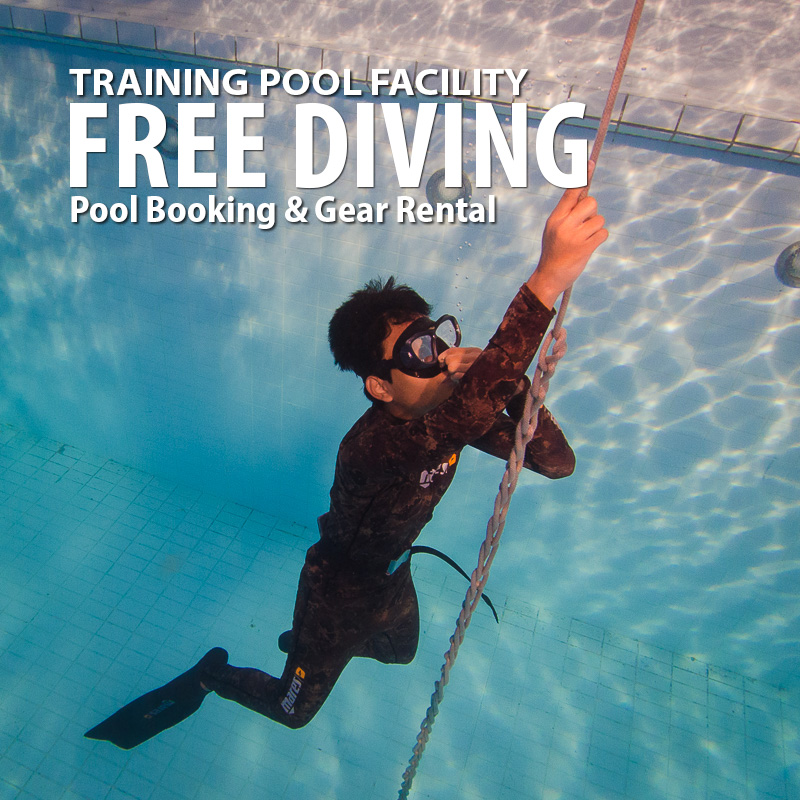 FREE DIVING POOL ENTRY FEES